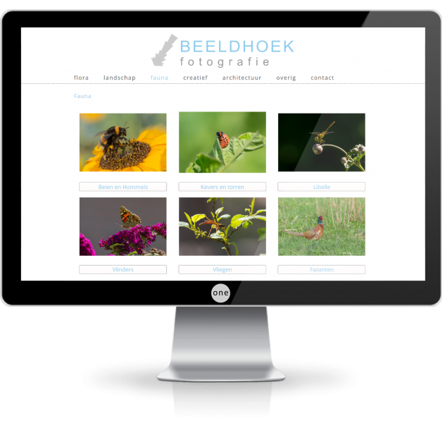 webdesign zwolle monitorbeeldhoek